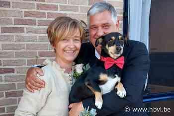Jenny en Karl in Hoeselt (Hoeselt) - Het Belang van Limburg Mobile - Het Belang van Limburg