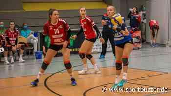 Sachsen Volleys Grimma steht wohl voller Terminkalender bevor - Sportbuzzer
