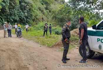 ¡Sicariato en el sur del Tolima! Asesinaron agricultor en zona rural de Planadas - Alerta Tolima