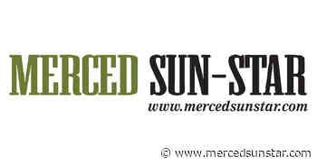 Winners of 25th Annual Lake McSwain Trout Derby announced - Merced Sun-Star