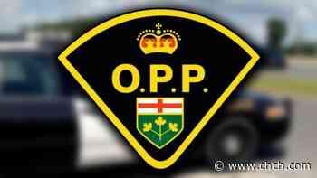 OPP investigate fatal crash in Hagersville as family raises money for information - CHCH News