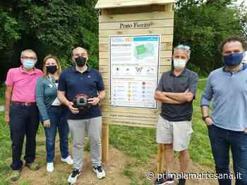 """Cernusco sul Naviglio festeggia il titolo di """"Comune amico delle api"""" con una biciclettata - Prima la Martesana"""
