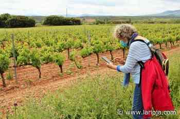 De ruta hacia el centenario encino Cayo - La Rioja