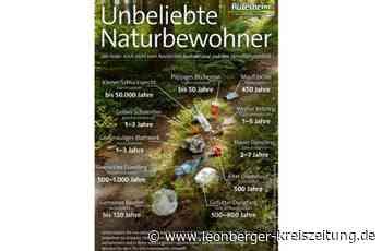 Wilder Müll in Rutesheim: Die Stadt thematisiert das Problem humorvoll - Rutesheim - Leonberger Kreiszeitung