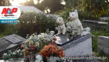 Alegrete pode ter cemitério para animais domésticos - Jornal Expresso Ilustrado
