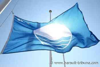 Marseillan : 4 pavillons bleus pour la ville - Hérault-Tribune