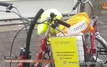 Nova Milanese green, la lotta alle zanzare si fa in bicicletta - Il Cittadino di Monza e Brianza