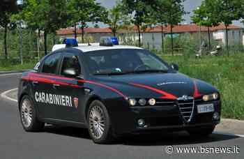 Cellatica, pensionato nei guai: in casa aveva 24 chili di marijuana | BsNews.it - Brescia News - Bsnews.it
