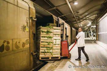 Transport ferroviaire. Perpignan-Rungis : le refus du train fantôme - L'Humanité
