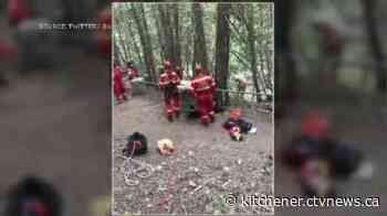 Rope rescue performed for dog that fell over 60 feet into Elora Gorge - CTV Toronto