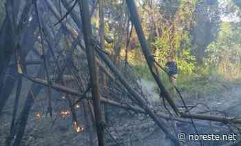 Se registra incendio en Coatzintla – Noreste - NORESTE