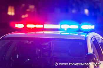 Atikokan resident charged for fleeing from police - Tbnewswatch.com