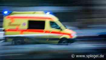 Tarmstedt: Rottweiler verletzt spielendes Kind durch mehrere Bisse