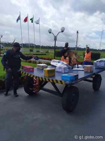 Aeroporto de Altamira, no Pará, é alvo de fiscalização da Polícia Federal - G1