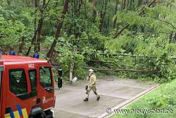 Omgevallen bomen en verlichtingspaal blokkeren straat