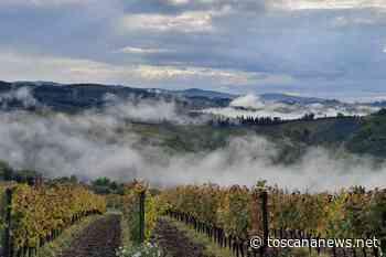 Greve in Chianti: lieve scossa di terremoto questa mattina - Toscana News - Toscana News