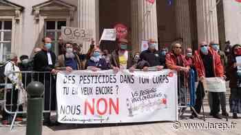 Les militants anti-glyphosates sont repassés devant le tribunal d'Orléans - La République du Centre