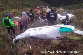 Narcopiloto brasilero falleció en avión siniestrado en La Grita - La Prensa de Lara