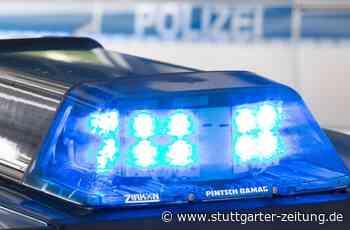 Sachschaden in Osterburken - Unbekannte schießen mit Luftgewehr auf Limesturm - Stuttgarter Zeitung