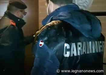 Traffico di droga e armi: chiuse tre aree di spaccio a Lainate. Arresti in tutta la Lombardia - LegnanoNews.it