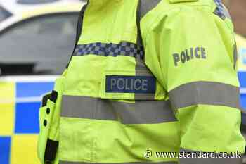 Police officer could face criminal charges over death of pedestrian - Evening Standard