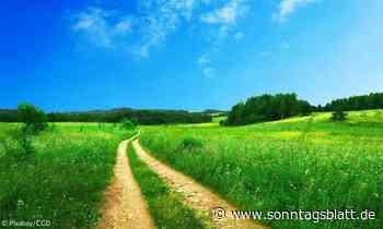 Spirituelles Wandern auf dem Ökumenischen Kapellenweg in Scheidegg - Sonntagsblatt