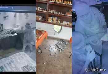 Hacen boquete y saquean negocio; ladrones se llevan caja fuerte y carne seca - info7 - INFO7 Noticias