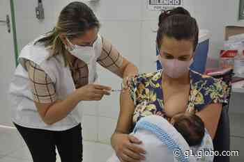 Ipojuca vacina grávidas e mulheres que estão no período de pós-parto com imunizante da Pfizer - G1