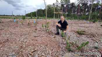 """Voedselbos in Pelt blijkt onwettig: """"Ik ben geen misdadiger maar een pionier"""""""