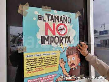 Sector Salud intensifica eliminación de criaderos de moscos en Felipe Carrillo Puerto - Galu