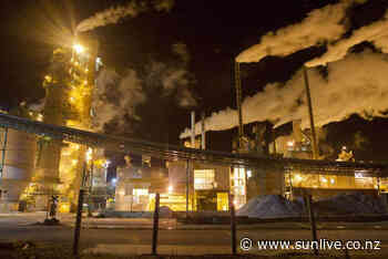 Unease in Kawerau as mill consults with staff - The Bay's News First - SunLive