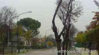Lavori in corso per la ciclabile da via Barbarigo fino a Stra - Il Mattino di Padova