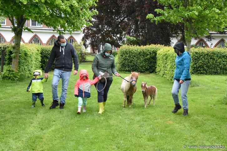 Regen houdt gezinnen niet weg van eerste Parkenparade