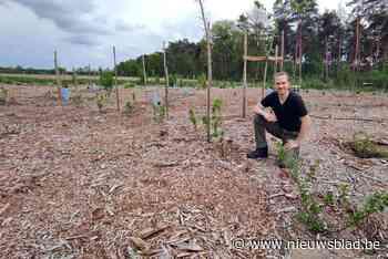 Wanneer je nieuwe bos volgens de letter van de wet geen bos is: Marcus (45) riskeert zware boete voor educatief droomproject