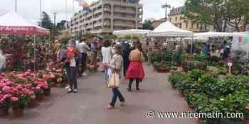 PHOTOS. Malgré la grisaille et les restrictions sanitaires, du monde à Grasse pour célébrer la rose - Nice-Matin