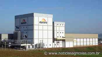 Aurora Alimentos assume quatro novas unidades em Tapejara e Ibiaçá (RS) - Notícias Agrícolas