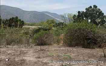 Halla un cadáver en descomposición en Palmar de Bravo - El Sol de Puebla