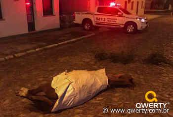 Cavalo morre depois de colidir com motociclista em Dom Pedrito - Qwerty Portal
