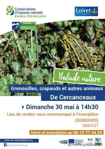 Grenouilles, crapauds et autres animaux des mares de Cercanceaux Dordives dimanche 30 mai 2021 - Unidivers