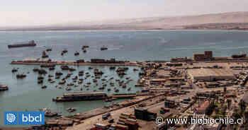 Terminal Puerto Arica arriesga multa de $7.500 millones tras fiscalización ambiental - BioBioChile