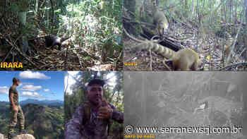 Filmagens na APA Mata do Posto em Cordeiro são surpreendentes - Serra News