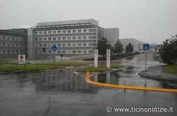 Magnago: caduta a cavallo per una ragazza di 22 anni, codice giallo all'ospedale di Legnano - Ticino Notizie