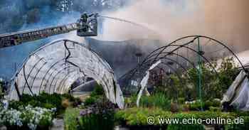Lagerhalle in Birkenau ausgebrannt - Echo Online