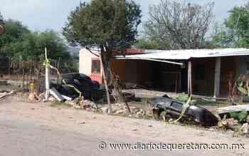 Localizan mujer sin vida en Buenavista - Diario de Querétaro