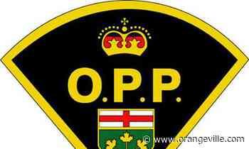 Suspects flee police in stolen Toyota truck after pair of Orangeville thefts - Orangeville Banner