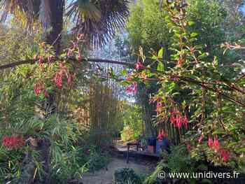 Explication sur comment fonctionne un bambou Jardin Émeraude samedi 3 juillet 2021 - Unidivers