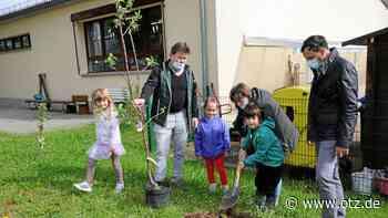 Hermsdorf will Bäume entlang der Autobahnen pflanzen - Ostthüringer Zeitung