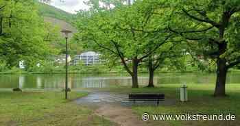 Mehr Flusstourismus nach Bernkastel-Kues: Stadt schafft Infrastruktur - Trierischer Volksfreund