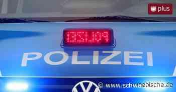 Unbekannte Täter randalieren an Löschteich in Bad Saulgau - Schwäbische