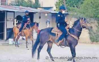 Da seguridad policía montada en Mixquiahuala - El Sol de Hidalgo